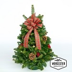 Highland Tabletop Tree | Christmas Tree